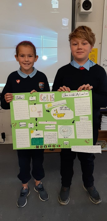 4th_Class_The_Celts_Projects_6.jpg